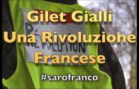 Gilet Gialli di Franco Fracassi