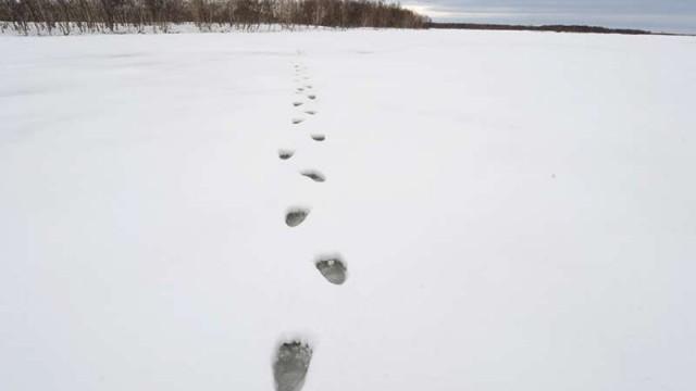Un tuffo nella Siberia